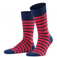 Image of Even Stripe Socks by FALKE